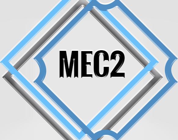 Elevador Modelo MEC2